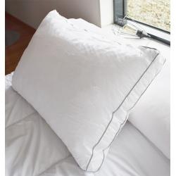 Lot de 10 oreillers 65x65 cm sensation duvet polyester microfibre 900 gr