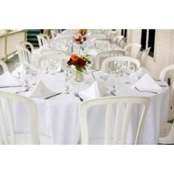 Lot de 76 chaises bistrot blanches empilables