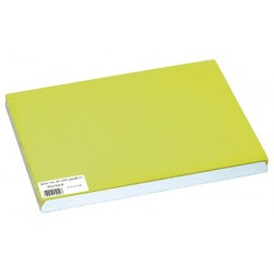 Carton de 500 sets de table papier 30 x 40 cm vert kiwi