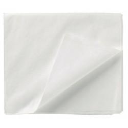 Carton de 100 draps plats blancs jetables 240 x 140 cm